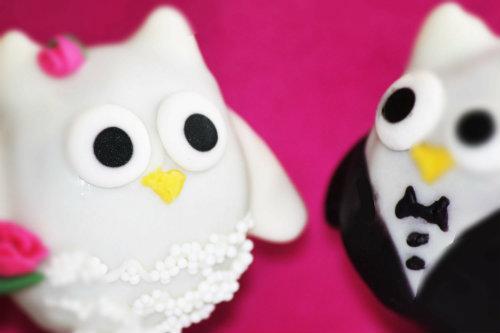 owl-cake-pops